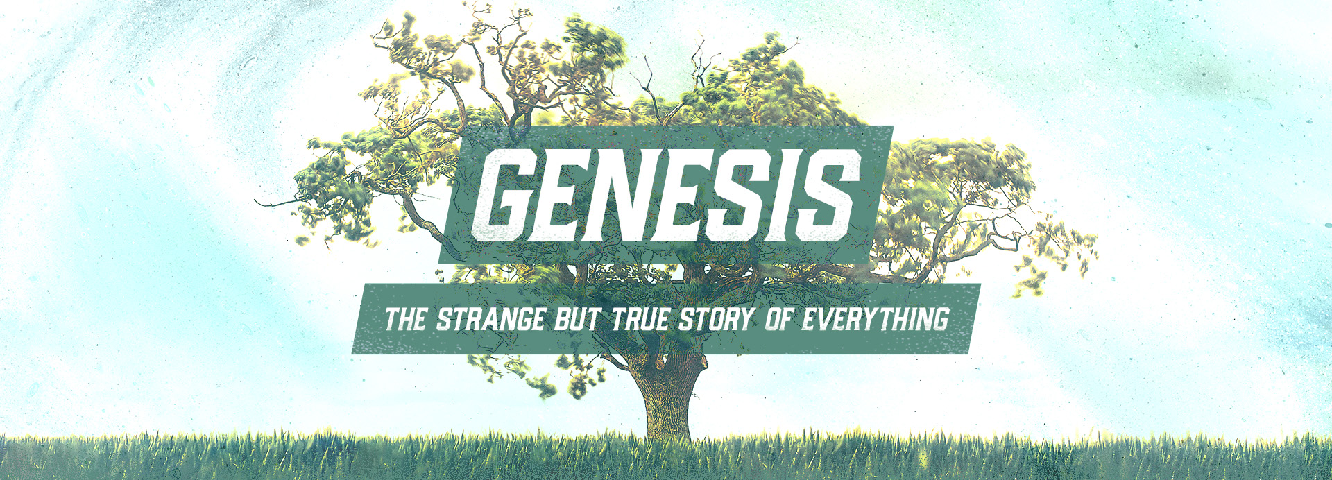 Genesis: The Strange but True Story of Everything